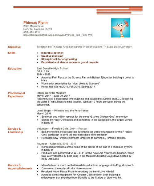 Phineas Flynn Resume   Functional